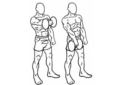 Elevaciones frontales alternas con mancuerna