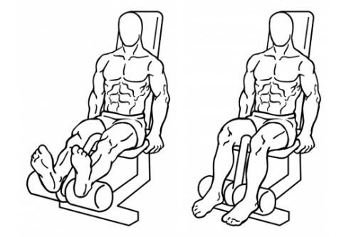 Curl femoral en máquina sentado