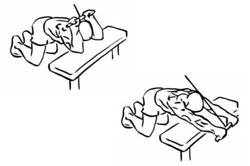 Extensiones de tríceps de rodillas